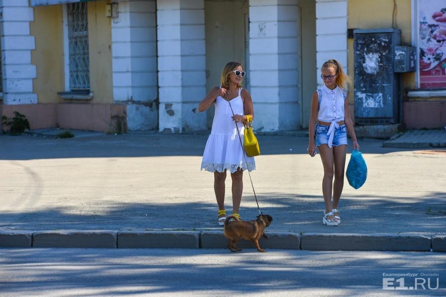 Рядом с милым домиком гуляют милые дамы с собачкой.