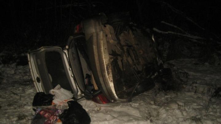 Смертельное ДТП с лосем в Ярославской области: пенсионер на трассе влетел в дикое животное