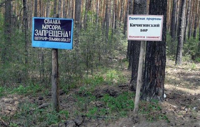 Юный южноуралец устроил пожар в заповедном бору на 1,8 миллиона рублей