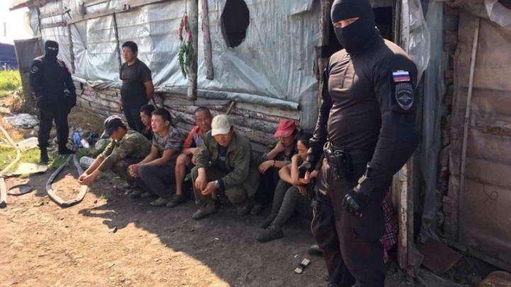 Силовики с помощью квадрокоптера нашли нелегалов в теплицах под Челябинском