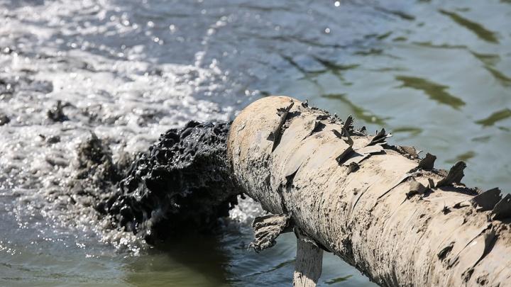 Донские власти выделят 4,5 млн рублей на исследование реки Темерник
