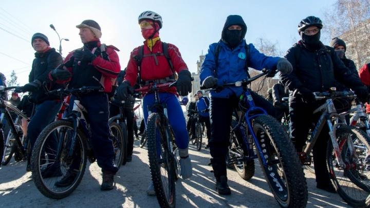 Двухколесный «зверь» и раритет: волгоградцы вывели на парад свои велосипеды