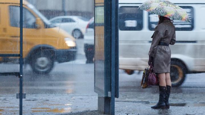 Водителей и пешеходов Волгограда предупредили о плохой видимости на дороге