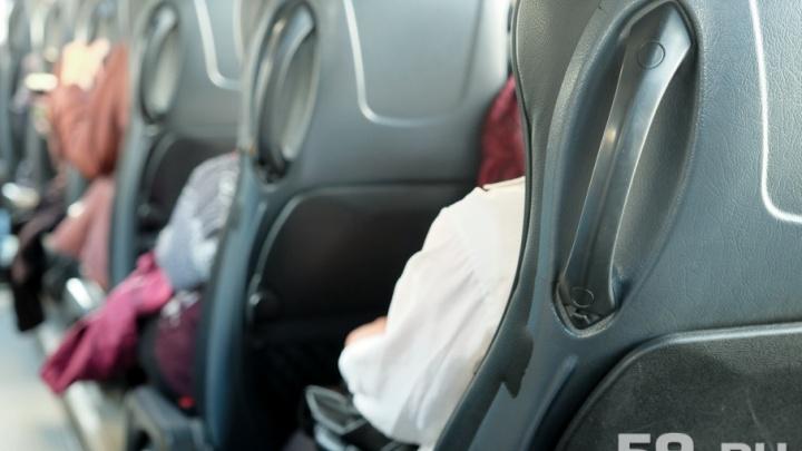 В Прикамье автоинспекторы остановили двоих пьяных водителей автобусов