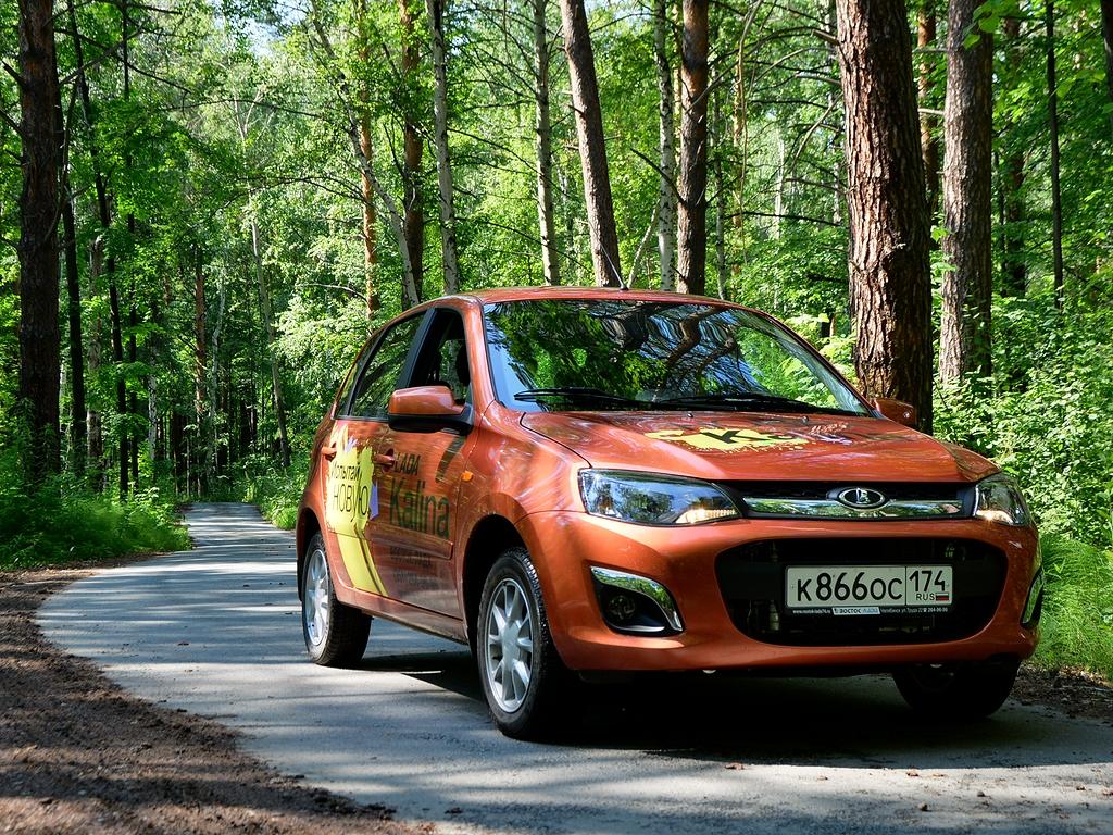 Традиционные модели АВТОВАЗа теряют долю рынка, и акцент постепенно переносится на автомобили, выпущенные в последние годы: Largus, X-Ray, Vesta