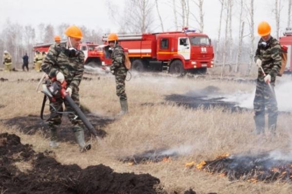 Пожары ликвидируют в первые сутки