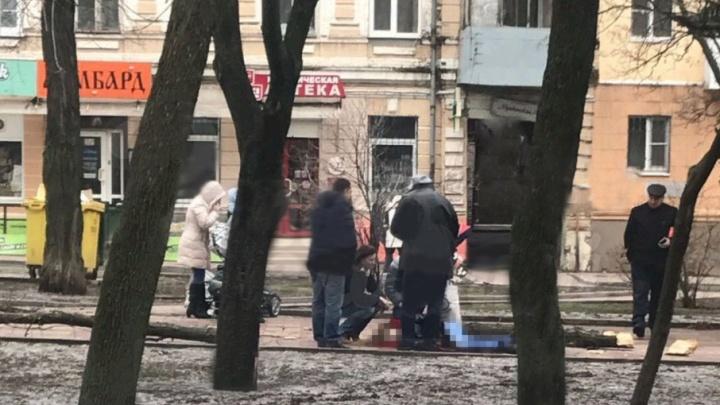 На Пушкинской рухнувшее от порыва ветра дерево убило ростовчанку