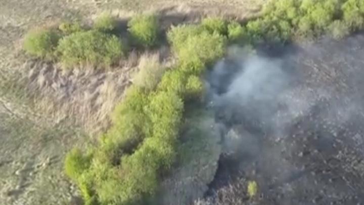 Бор на северо-западе Челябинска спасли от огня