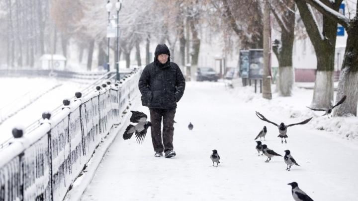 Завтра в Ярославле резко похолодает