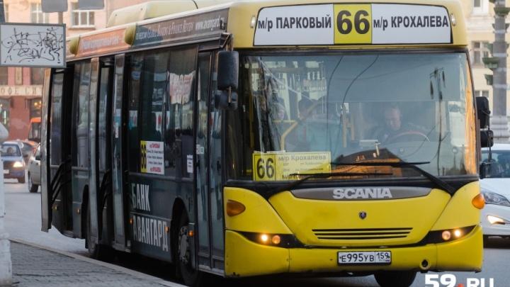 Пермские перевозчики потребовали повысить тариф за проезд в общественном транспорте