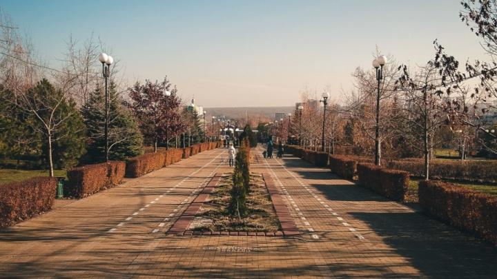 Дончан просят подсказать, какие парки и скверы нужно срочно привести в порядок
