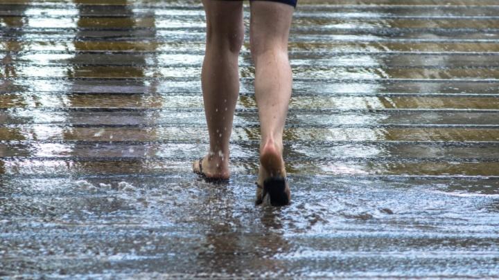 Синоптики: в начале следующей недели в Ростове пойдут дожди