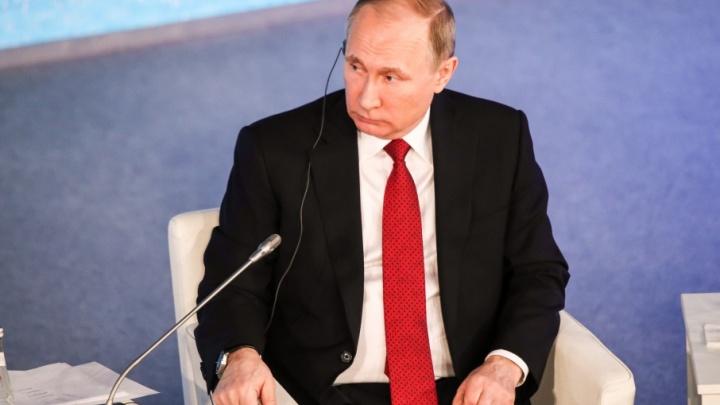 Трое северян вошли в список доверенных лиц Владимира Путина