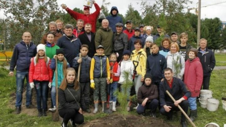 В центре Северодвинска общественники посадили кедры, березы и барбарис