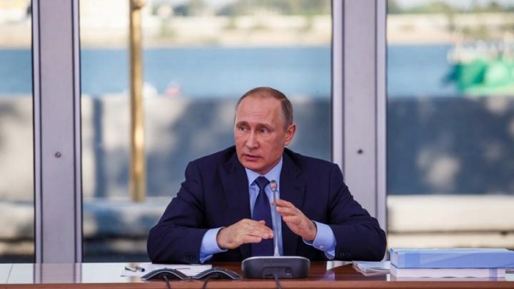 Больше 77% волгоградцев проголосовали за Владимира Путина