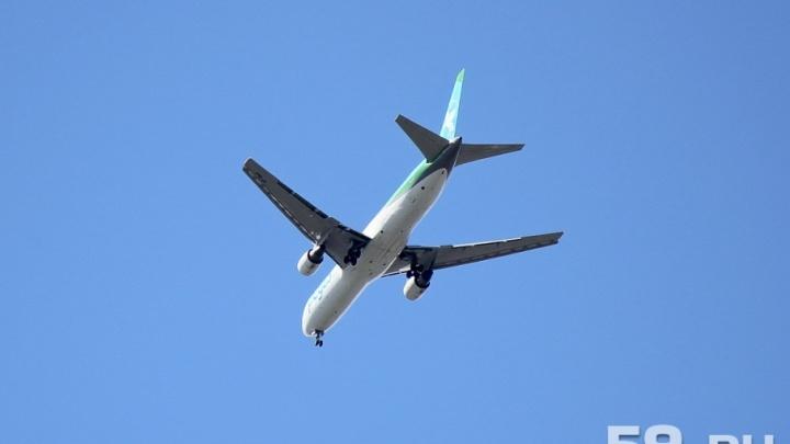 Пьяный пермяк устроил дебош в самолете