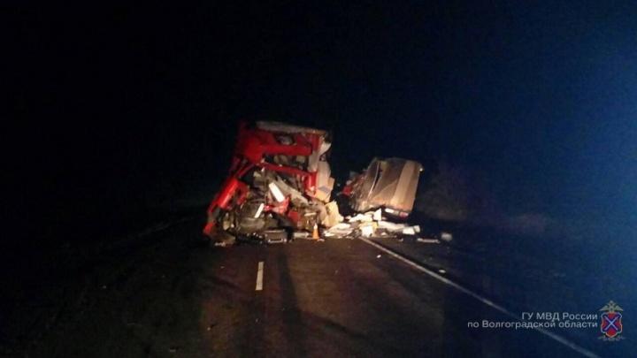 На трассе под Камышином столкнулись две фуры, один водитель погиб