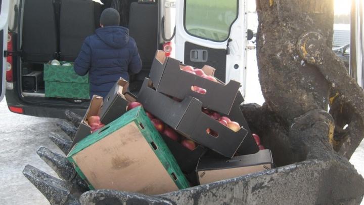 На ярославский полигон «Скоково» тоннами вывозят запрещённые продукты из-за границы