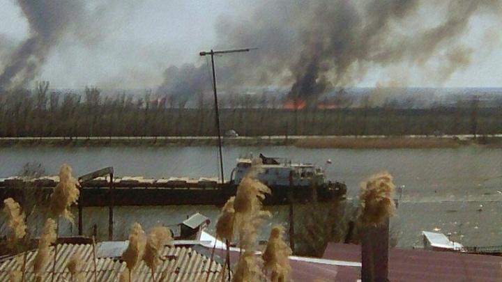 Все под контролем: камыш на Левбердоне подожгли специально