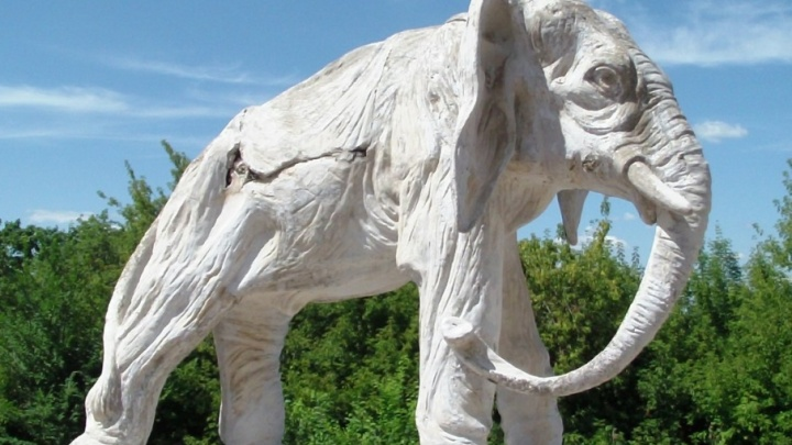 Дачу со слонами и усадьбу фаворитов Екатерины II отдадут в частные руки