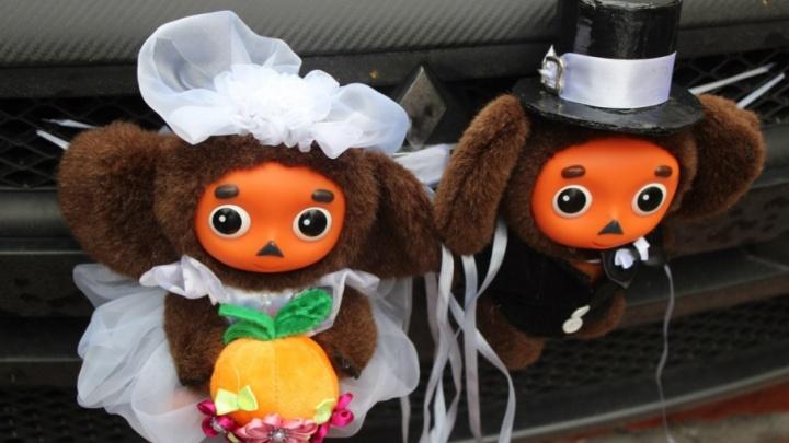 В Поморье стало больше свадеб и многодетных семей
