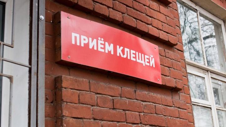 Более семи тысяч ярославцев пострадали от укусов клещей