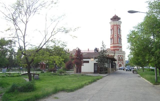 Волгоградцы отметят столетие дуба в Комсомольском саду