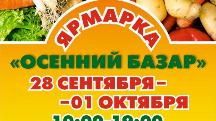Ярмарка «Осенний базар» предлагает выгодно купить картофель, мясо, сыры и сладости