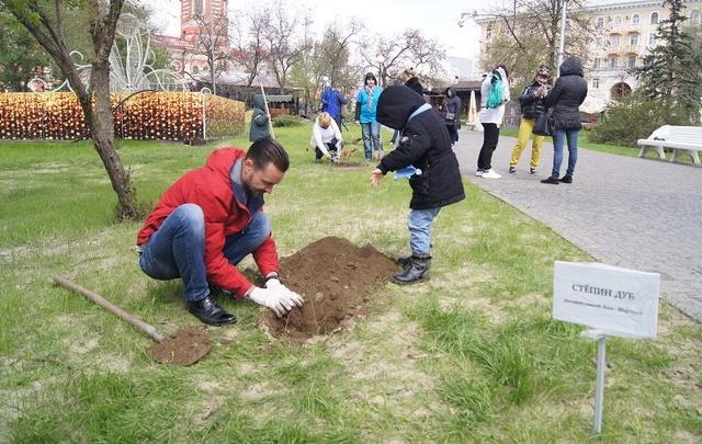 В Комсомольском саду Волгограда высадили сто новых дубов