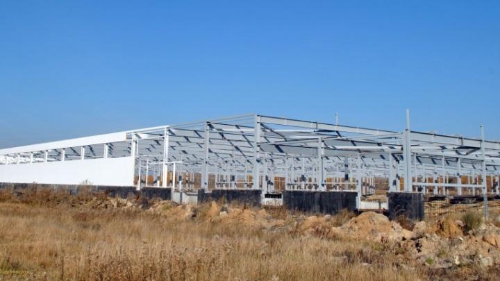 Построили уже на четверть: в осетровый завод на Южном Урале вложат 700 млн рублей