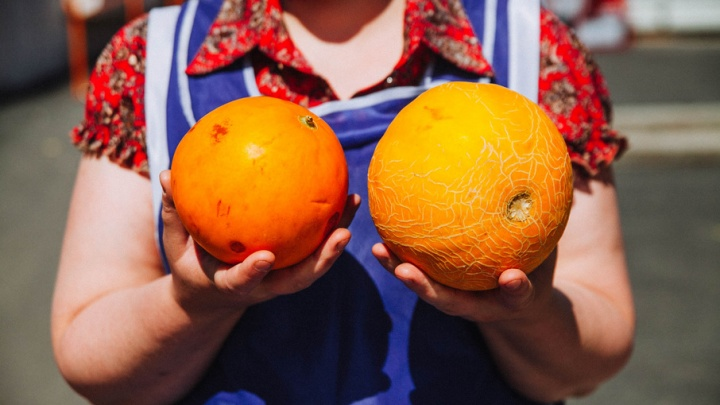 Покажите ваши дыньки: выбираем бахчевые вместе с тюменскими продавцами