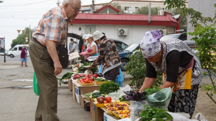 Огурцы раздора: из центра Волгограда гонят дачников