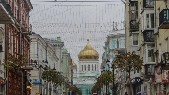 Зима в Ростове откладывается: неделя будет теплой