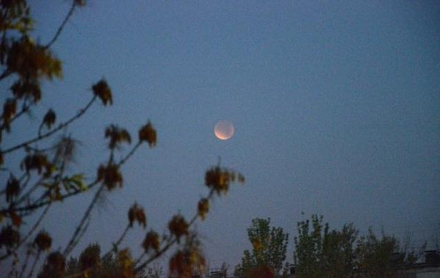 Волгоградцы увидели полную Луну над Юпитером