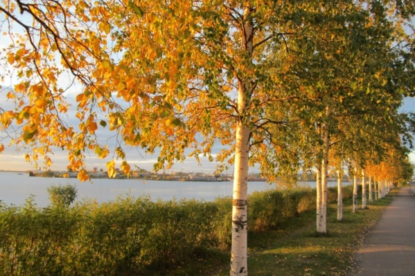 Время наслаждаться прогулками по «золотому» Архангельску наконец-то наступило