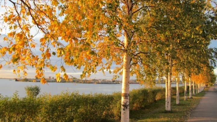 Хорошая погода в Архангельской области сохранится до конца рабочей недели