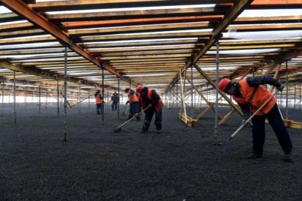 Специалисты подготавливают почву для газона