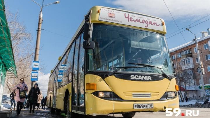 Интервью в автобусе. Директор Союза перевозчиков — о «гонках» водителей, автопарке и цене на билет