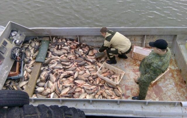 В «сети» пограничников попались три браконьера и 6 тысяч рыб
