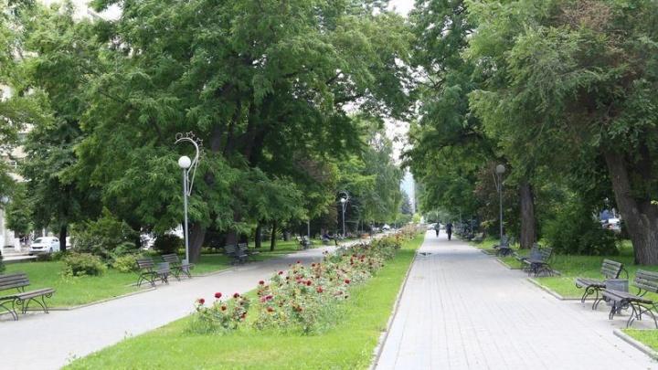 За благоустройство Волгограда во время каникул подросткам заплатят по восемь тысяч рублей