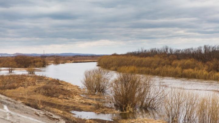 В случае подъема воды в Вагайском районе организуют вывоз ценных вещей жителей