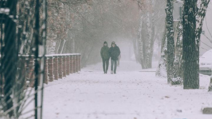 Метель и мокрый снег: синоптики предупреждают тюменцев о непогоде
