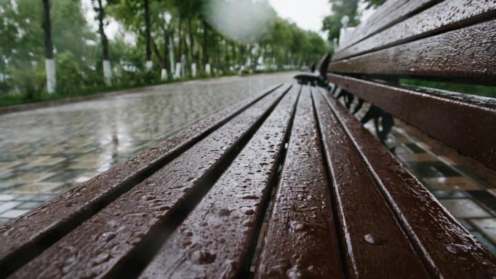 В Самарской области ожидают кратковременные дожди и грозу