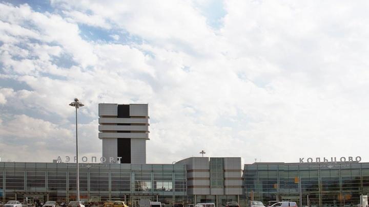 Буйный пассажир из Югры покусал полицейских в аэропорту Екатеринбурга