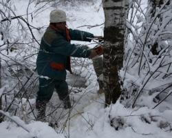 Ярославские энергетики увеличили число ремонтных бригад до 62