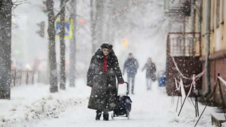 В Ярославле полицейские спасли на улице замерзшую пенсионерку