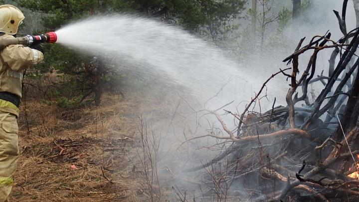 Сотрудники самарского МЧС потушили лесной пожар в Красноярском районе