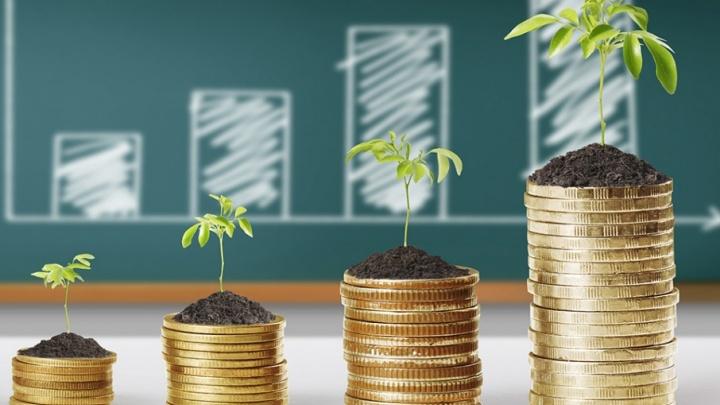 Что такое «необычные инвестиции» и как на них крупно заработать