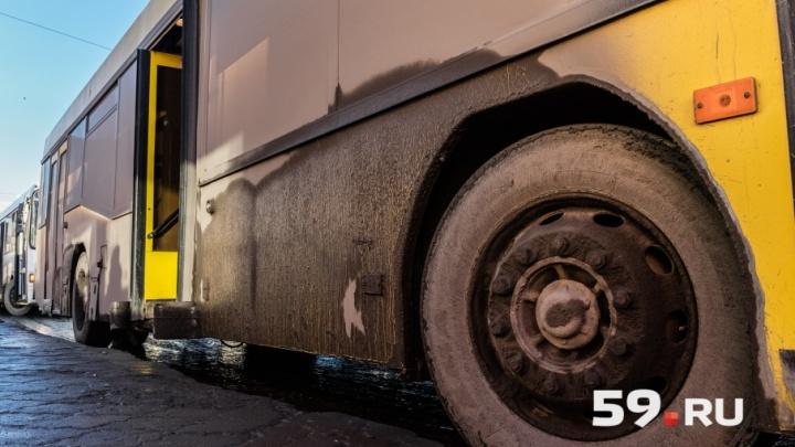 Не ударить в грязь лицом: проверяем на чистоту пермский общественный транспорт