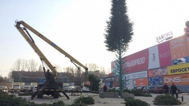 Около ТЦ «Русь» начали собирать новогоднюю елку